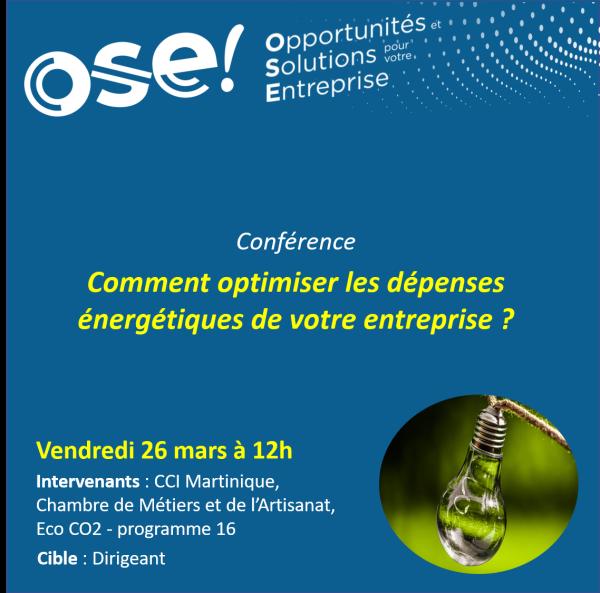 Comment optimiser les dépenses énergétiques de votre entreprise ? - 26/03 12h (En ligne)