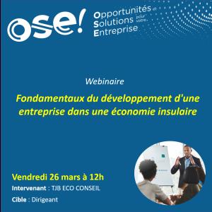 Fondamentaux du développement d'une entreprise dans une économie insulaire.  - 26/03 12h (En ligne)